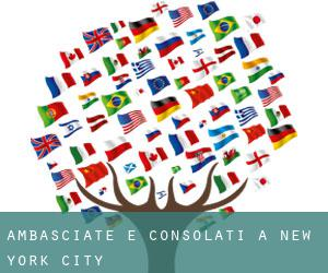 Ambasciate e Consolati a New York City