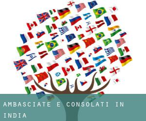 Ambasciate e Consolati in India