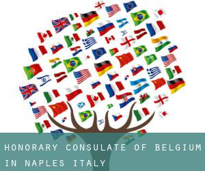 Honorary Consulate of Belgium in Naples, Italy